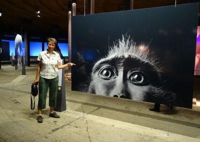 Eine tolle Fotoausstellung mit Naturaufnahmen