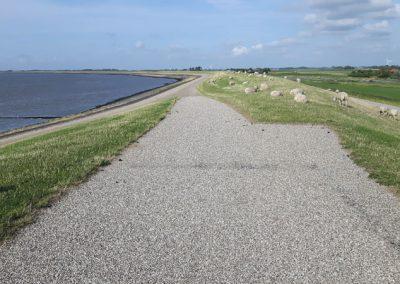 Fahrradtour auf dem Deich entlang